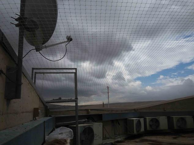 הרחקת יונים-גגות טכניים (4).jpg