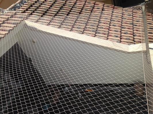 הרחקת יונים-גגות טכניים (19).jpg