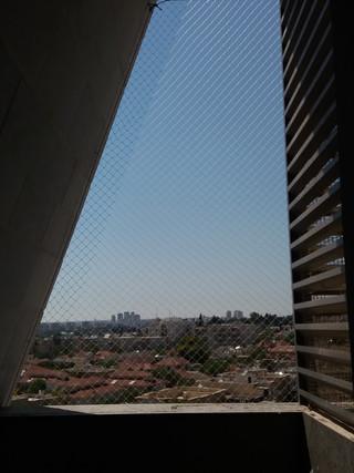 הרחקת יונים-בניינים (2).jpg