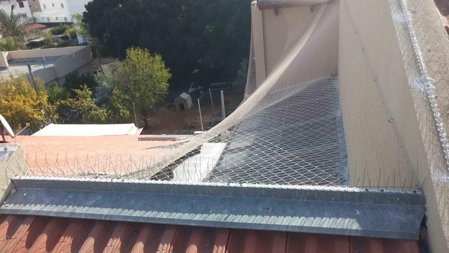 הרחקת יונים-גגות טכניים (32).jpg
