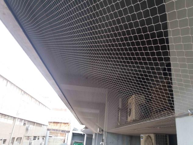 הרחקת יונים-גגות טכניים (6).jpg