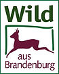 Kolja Kleeberg Wild aus Brandenburg