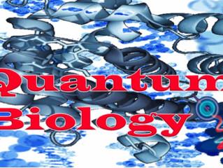 Biomat 2018: Quantum Biology