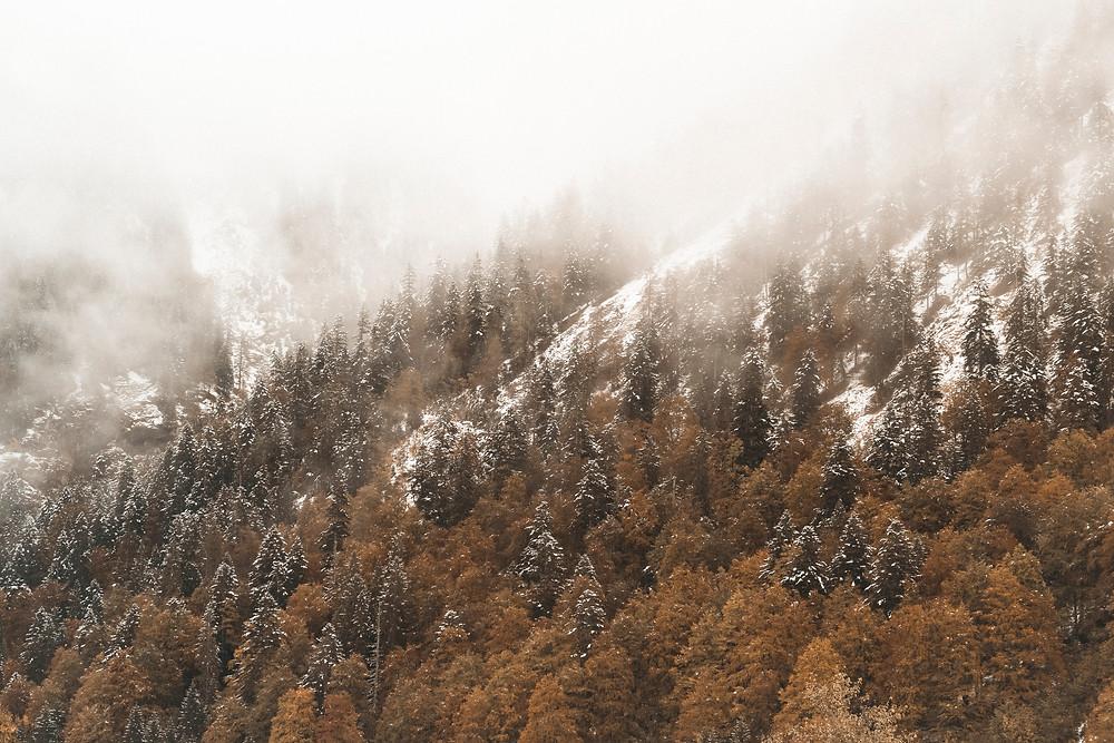 Herbst & Winter am Großen Ahornboden im Karwendel