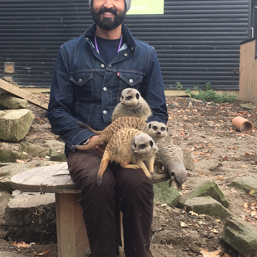 A meerkat! And Malcolm!