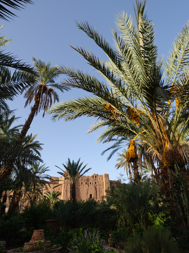 View of the old kasbahs from the garden of Kasbah Azul