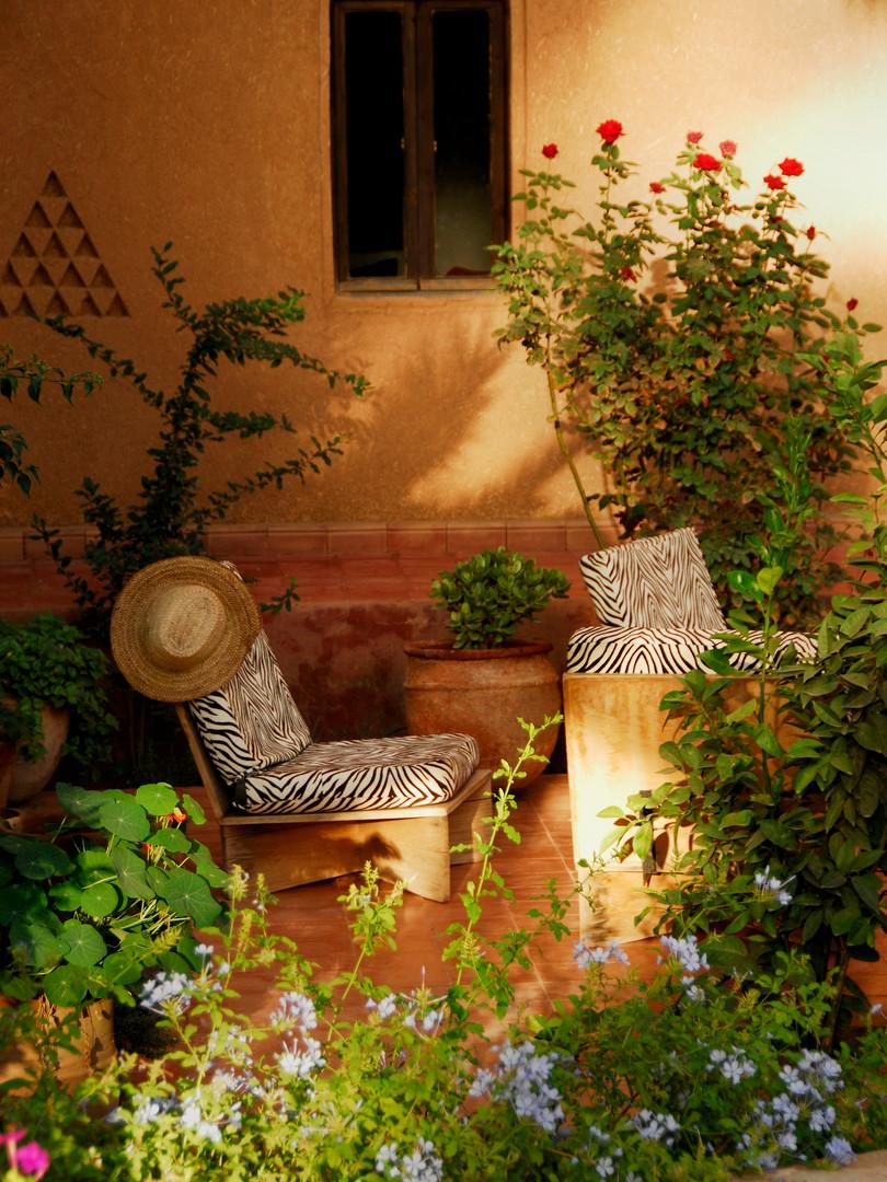 Le Charme d'une oasis privée dans la région Draâ Tafilatet