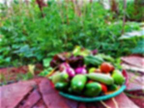 Kasbah Azul nourriture biologique Maroc
