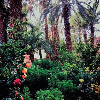 Domaine Kasbah Azul Maroc.jpg