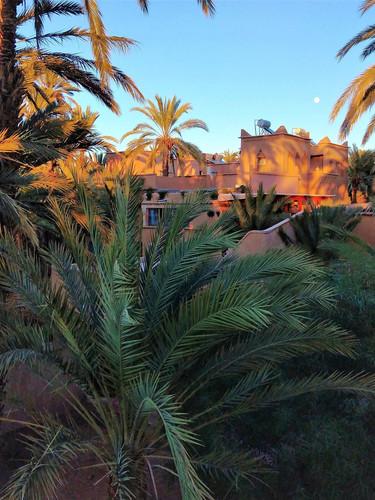 To en joy relaxing stay in valley Draâ Morocco
