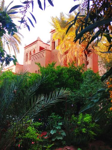 Hotel -Guest house kasbah Azul Agdz