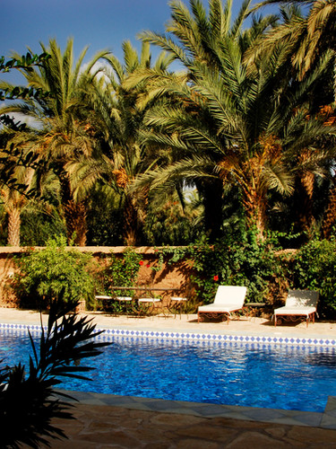 A swimming pool in the middle of the palm grove - Kasbah Azul