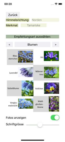 Empfehlungen Blumen