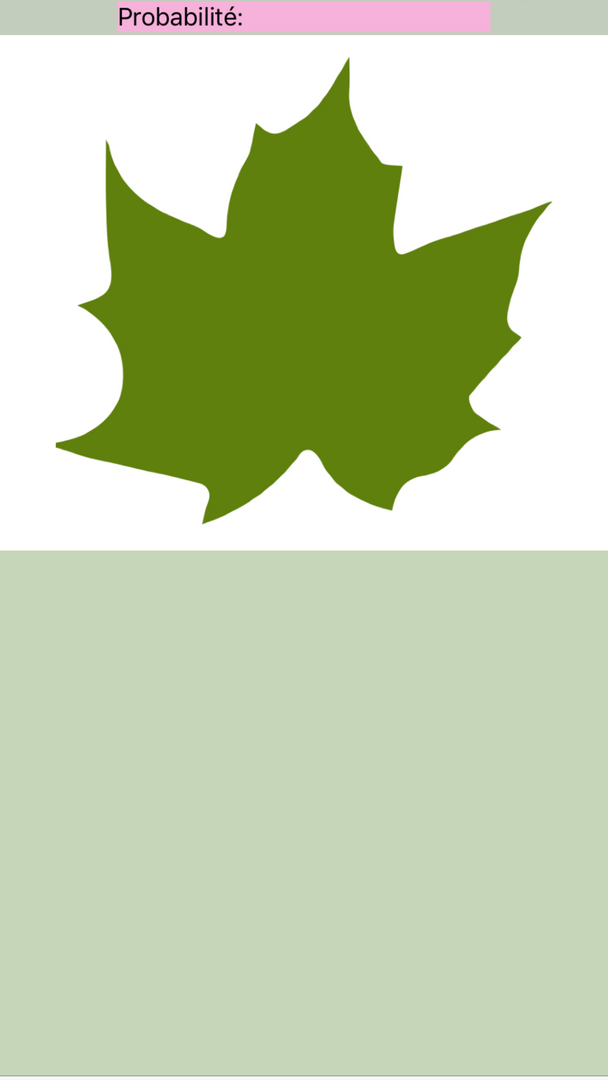 Maladies des plantes - prennez une photo