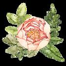 centerflower2_trans.png