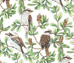 Kookaburras in the Trees