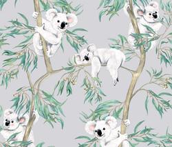 Koalas in the Trees - Grey