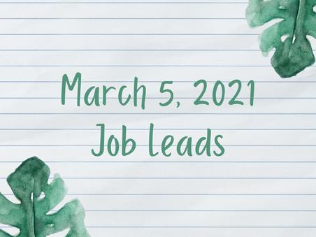 Job Lead - Friday