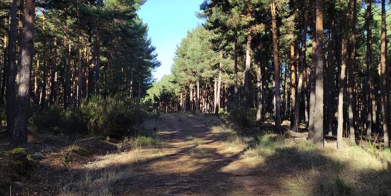 Ruta Modino-Corrales