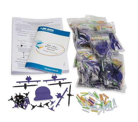 DNA, RNA - Protein Synthesis Kit
