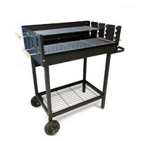 BARBECUE PARTY GRILL A CARBONE