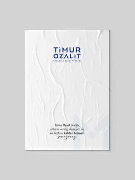 Timur Ozalit Afiş Poster - 2.jpg