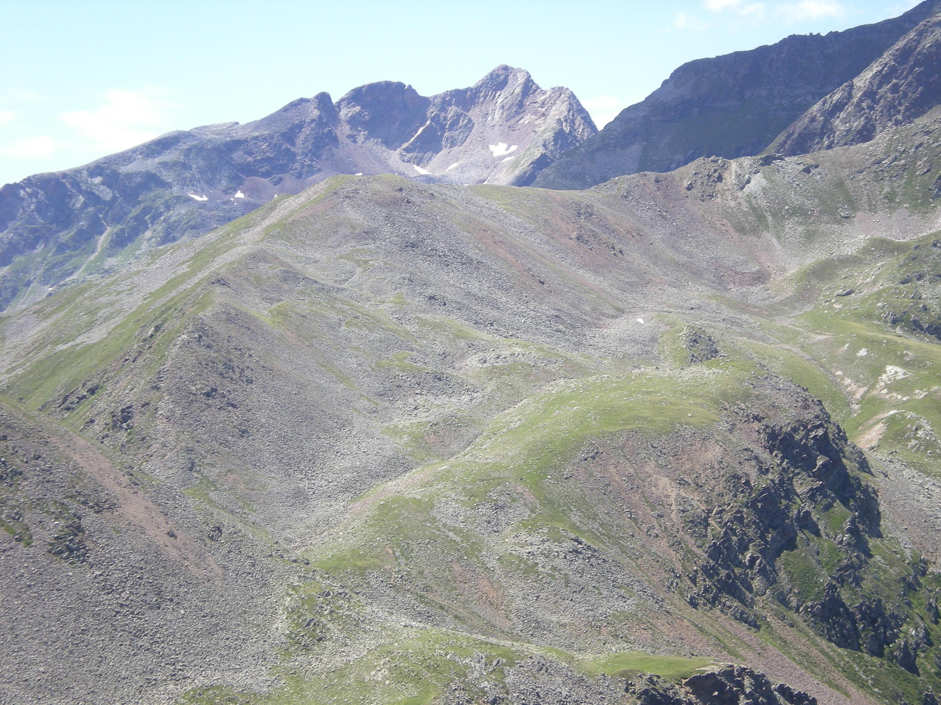 Erste Bilder 2008-07-25DSCN0345