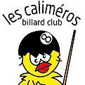 Billard Logo.jpg