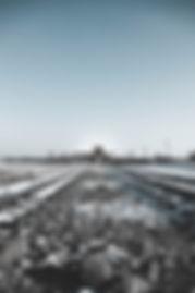 Poland Auschwitz Photo.jpg