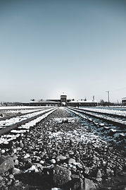 Poland Auschwitz Photo.jpg