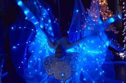 Световые крылья