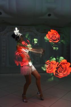 Световые розы
