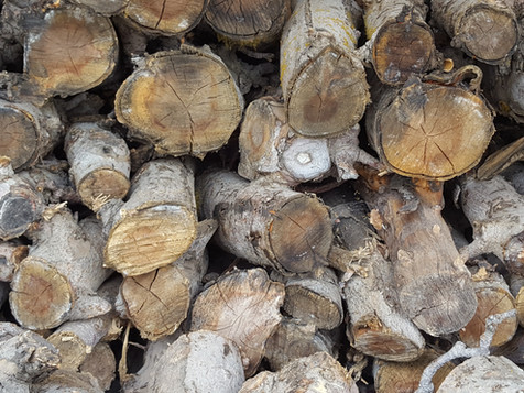 Smokin' Wood Pile