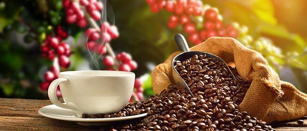 Café2.jpg