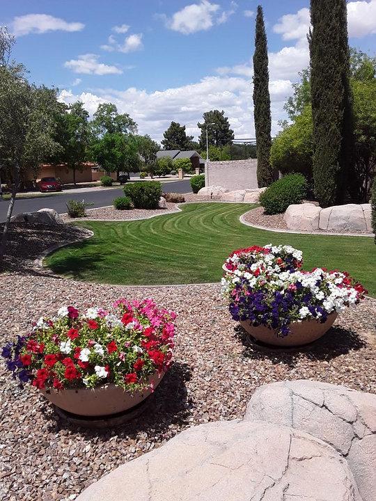 Carlos Landscaping Service