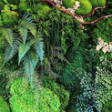 Replica moss wall elements
