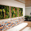 3 panel design using elements of Bamboo, moss, replica ferns,