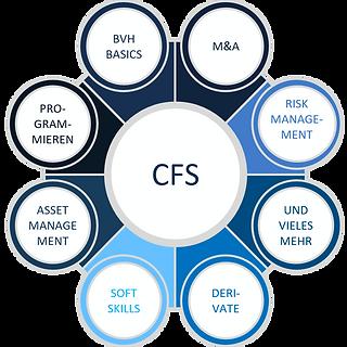 CFS Grafik.png