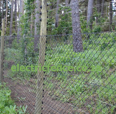 25-Strand Anti-Spread Electric Fencing, piggy backed of the treated fencing posts