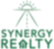 Synergy Logo 1.PNG