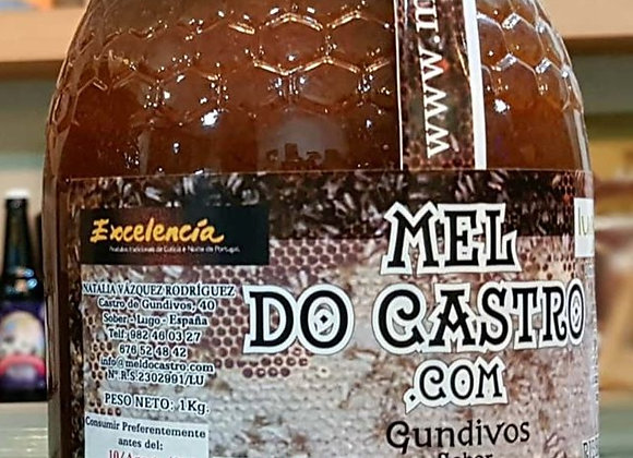 MIEL MULTIFLORAL (DO CASTRO / 1KG)