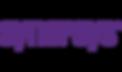 synopsys_logo.png