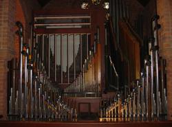 Organ+Today