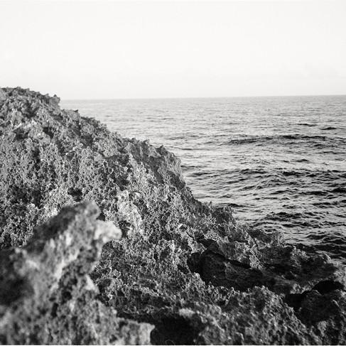 Canon SS 007_18.jpg
