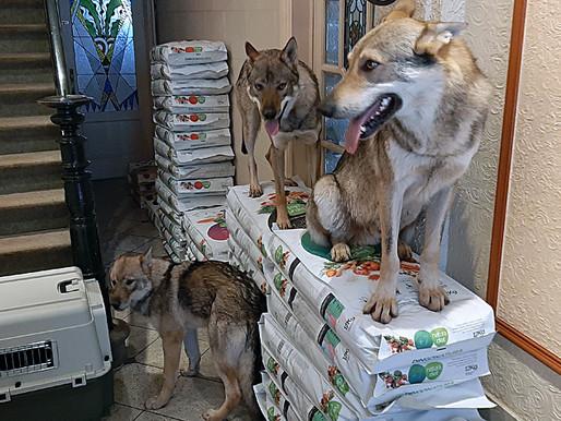 Boutique : la nourriture est bien arrivée !
