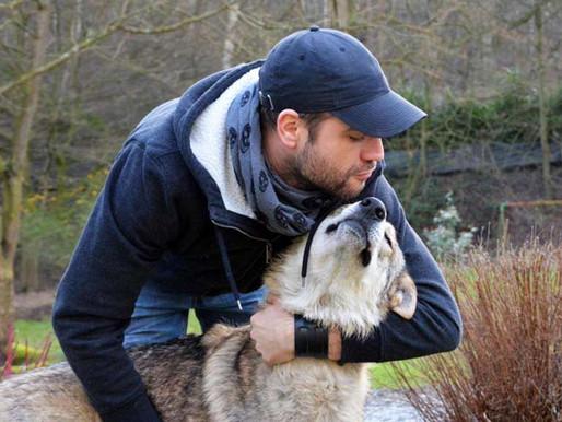 Formation : communication canine
