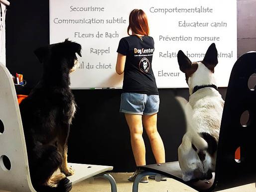 Nos formations sur le site du Dog Center !