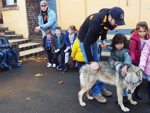 Quand N'ygma rencontre les enfants du petit Saint-André. Effet loup garanti !