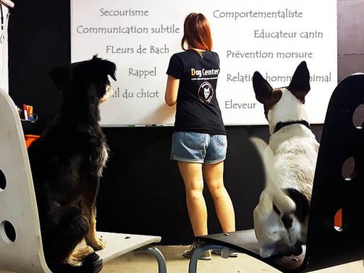 Formation aux métiers du chien : inscriptions ouvertes !