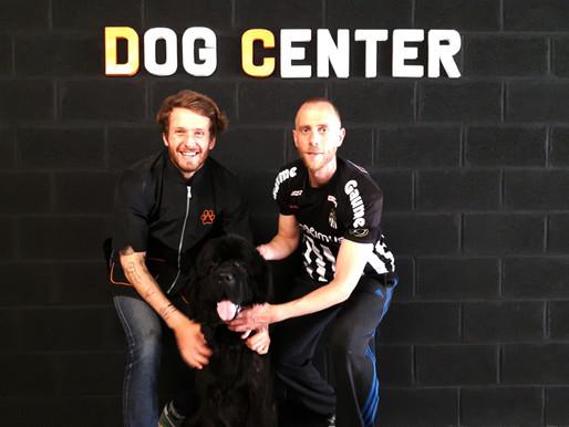 Concours : Résultats! Un zèbre au Dog Center